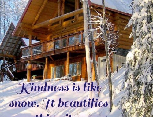Kindness Beautifies.